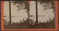 Fourteen-Mile Island from Narrows, by Conkey, G. W. (George W.), 1837-ca. 1900.png