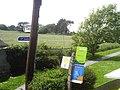Freshwater Bay bus stop flags.JPG