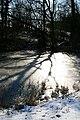 Frozen Pond - geograph.org.uk - 1161308.jpg