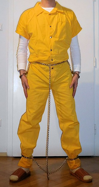 Belly chain (restraint) - Image: Full harness 2