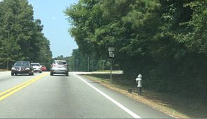 Georgia State Route 20 - SR 20 just south of Conyers