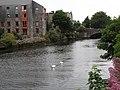 Galway - Corrib River - Bridge Mill's - panoramio.jpg