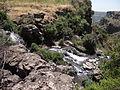 Gamla Nature reserve (37).JPG