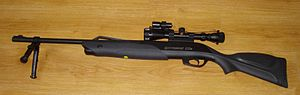 Gamo (airgun manufacturer) - A Gamo Extreme CO2 air gun with accessories.