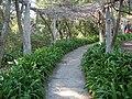 Gardenology.org-IMG 0747 hunt07mar.jpg
