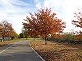 Gateway Spring Creek Park 13.jpg