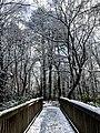 Georgia snow IMG 4703 (27170165859).jpg