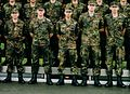 Germany-Army-Platoon cropped.jpg