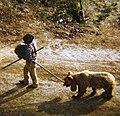 Gipsy and bear.jpg
