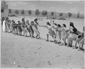 Girls at Isleta Day School in a tug of war, Albuquerque, New Mexico, 1940 - NARA - 519167.tif
