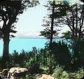 Glimpse of Lake Manapouri (4750331446).jpg