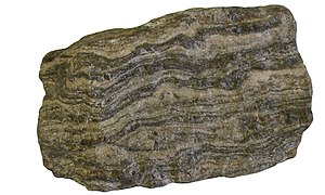 "Gneiss - Sample of gneiss exhibiting ""gneissic banding""."