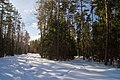 Gorodetsky District, Nizhny Novgorod Oblast, Russia - panoramio (2).jpg