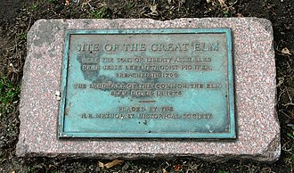 Great Elm (Boston) - Plaque to the Great Elm
