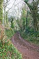 Green Lane to Lower Rocombe - geograph.org.uk - 1222348.jpg