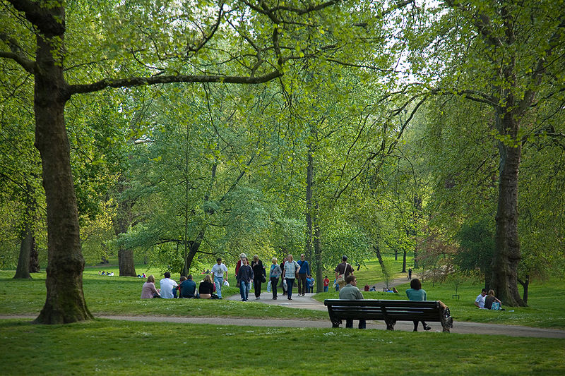 Green Park de Londres : Grands arbres et grandes pelouses dans le centre de Londres - Photo de David Iliff