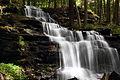 Gunn Brook Falls.jpg