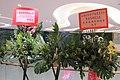 HK 粉嶺 Fanling 逸峯廣場 Green Code Plaza mall shop Sun Ming Yuen Banquet restaurant flowers March 2017 IX1 (1).jpg