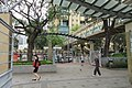 HK CWB 銅鑼灣 Causeway Bay 高士威道 Causeway Road Victoria Park trees April 2017 IX1.jpg