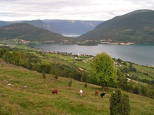 Sogn - Hafslovatnet with Sognefjord behind