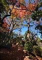 Hakone – Japan (4118914353).jpg