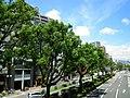 Hanakumacho - panoramio (12).jpg