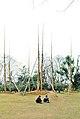 Hangzhou, Parque de Huagang 1978 05.jpg