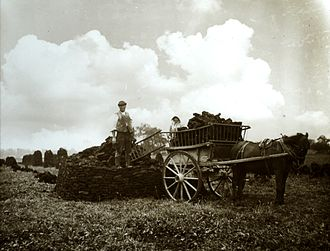 Peat extraction on the Somerset Levels - Harvesting the peat - Westhay - Sept 1905