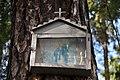 Havlíčkův-Brod-obrázek-na-začátku-Pelestrovských-lesů-poblíž-modré-značky-kousek-od-rybníku-Dráťák2013.jpg