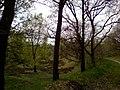 Herrenmoor bei Kleve 1.jpg