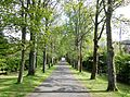 Holmwood House, Glasgow. The entrance driveway.jpg