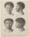 Homo sapiens - San, Zuid-Afrika - 1700-1880 - Print - Iconographia Zoologica - Special Collections University of Amsterdam - UBA01 IZ19400121.tif