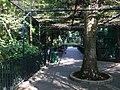 Hong Kong Zoological and Botanical Gardens 18.jpg