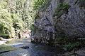 Hornad river (7563867284).jpg