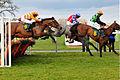 Horse racing (3309219331).jpg