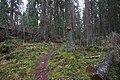 Hyypiökallio, Liesjärven kansallispuisto, Tammela, 15.11.2014.JPG
