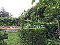 IMG 3932 - panoramio.jpg