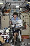 ISS-19 Gennady Padalka exercises on the TVIS in the Zvezda Service Module.jpg