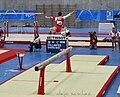 IXJSM2010 Gimnastics.jpg