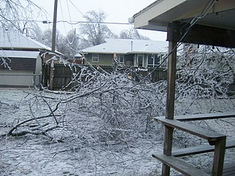 January 2007 North American Ice Storm - Fallen branches in Springfield, Missouri due to ice build up. Note downed power line.