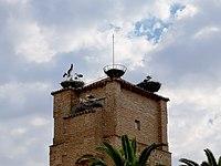 Iglesia de Alcaudete de la Jara.jpg