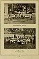 Illustrated bulletin (1917) (14598008658).jpg