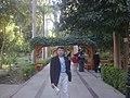 Image243جزيرة النباتات الطبيعية.jpg