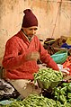 India, Day 10 (3391801757).jpg