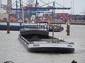 Indigo (ship, 2009) ENI 02332081, Port of Rotterdam.JPG