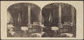 Interior of a Residence, from Robert N. Dennis collection of stereoscopic views 2.png