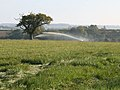 Irrigating in October - geograph.org.uk - 594145.jpg