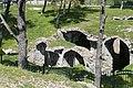 Izmir Kadifekale cistern 6655.jpg