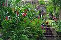 JM-ocho rios-konoko-garden.jpg