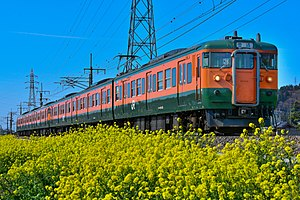115 series - A 6-car 115 series formation in Shonan livery on the Ryōmō Line in March 2016